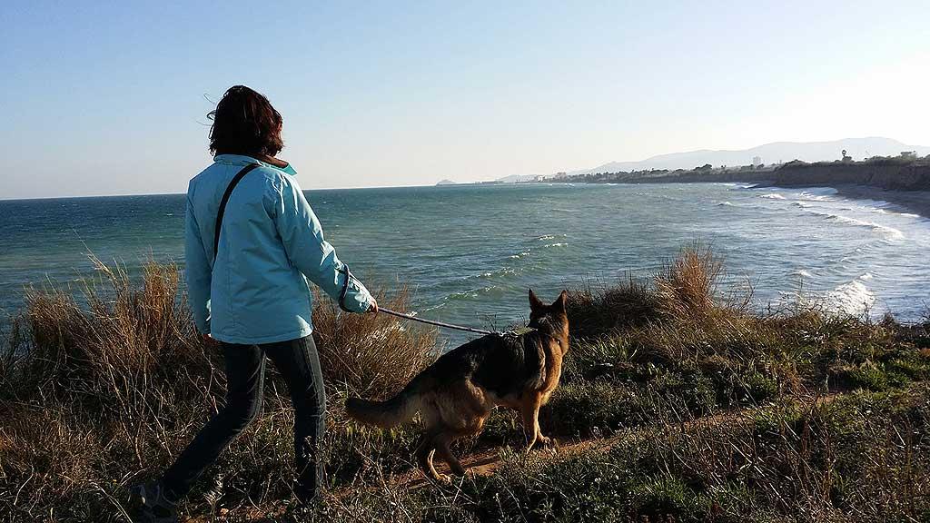 Más del 35% de los españoles realizará un viaje con su mascota este verano