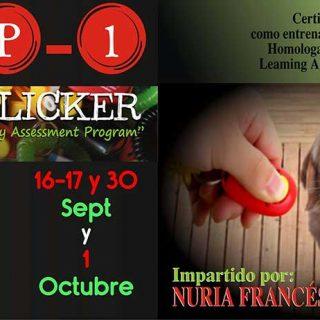 Curso de Clicker CAP1 en Madrid.