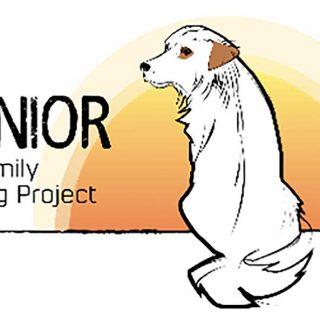 Family Dog Project pide tu colaboración para Senior Dog Project