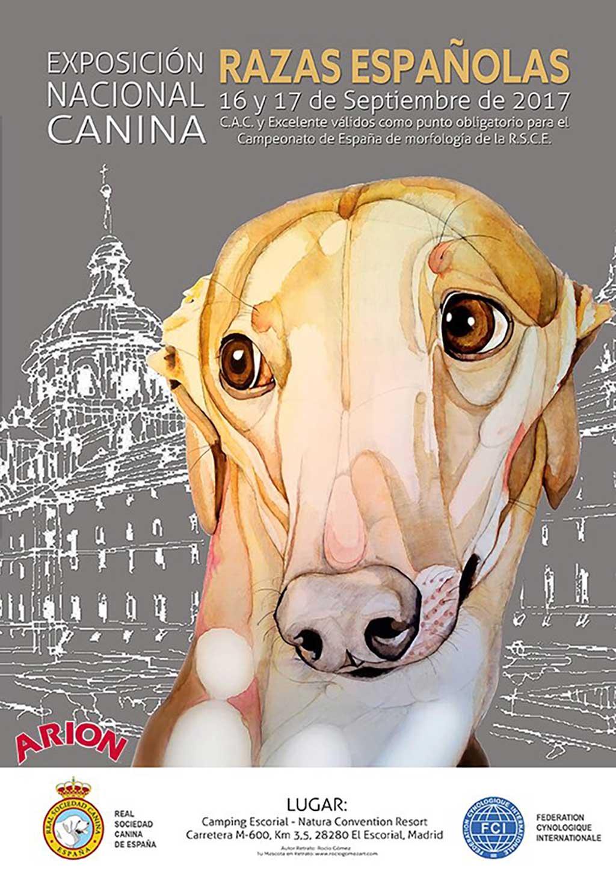 Cerca de 300 perros participan en la Exposición Nacional Canina de Razas Españolas.
