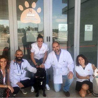 El Hospital Universitario Rey Juan Carlos pone en marcha un programa de visitas caninas para los niños hospitalizados.