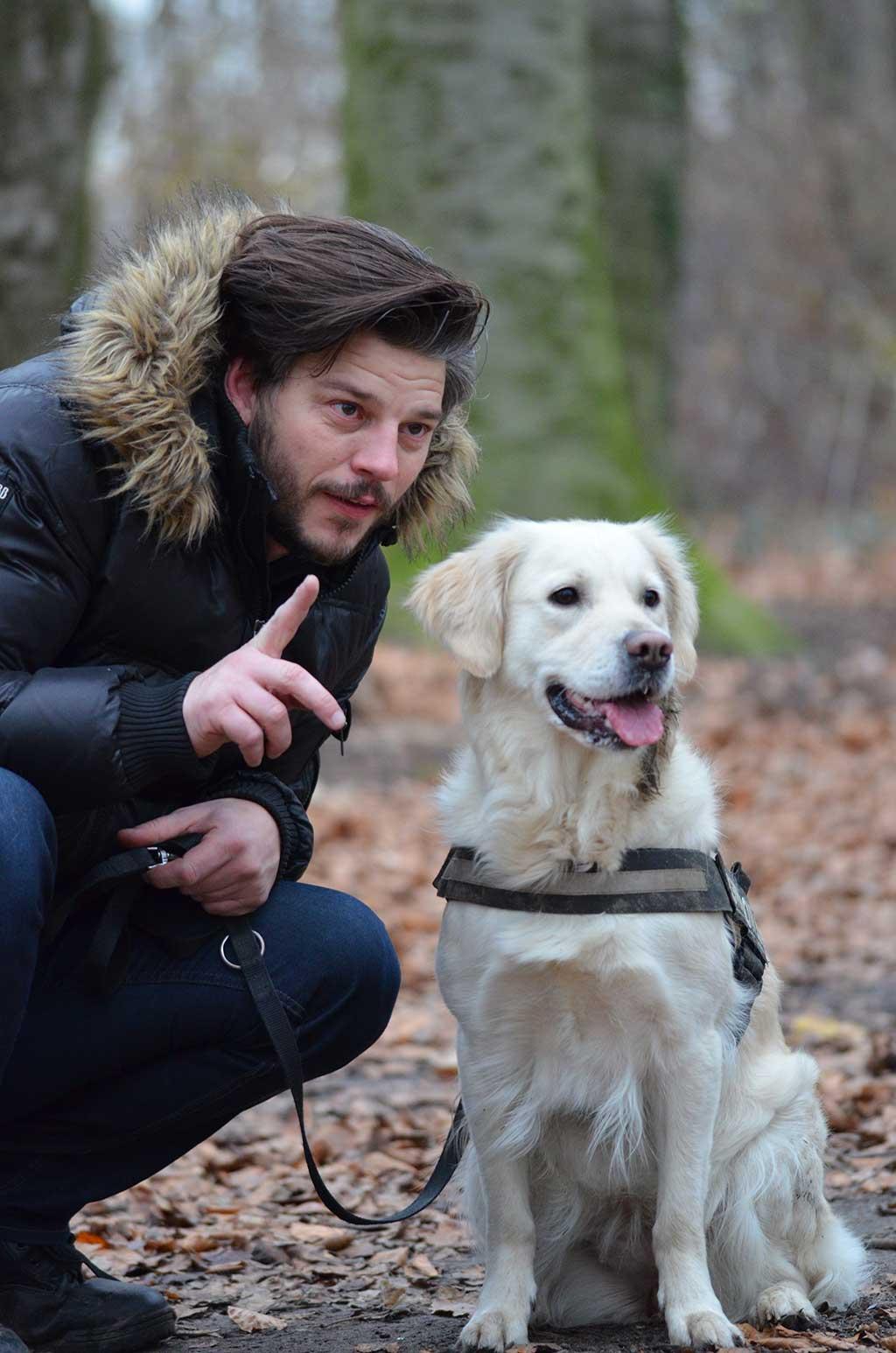 ¿Cómo usamos el cerebro para interpretar a los perros?