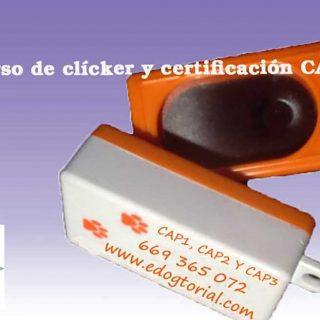 Curso de adiestramiento con clicker CAP 2 en Madrid.