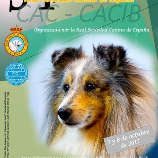 34º Exposición Internacional Canina de Otoño de Talavera.