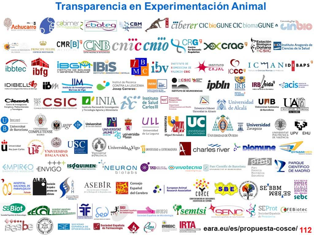 Acuerdo de transparencia sobre el uso de animales en experimentación científica en España.