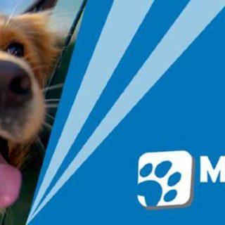 Salón Mi Mascota, en Málaga, 25 y 26 de noviembre.
