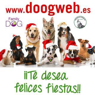 Doogweb y sus patrocinadores principales, Family Dog y Greenheart SuperPremiums, te deseamos que pases una feliz Navidad y que 2016 sea un año fantástico para ti y tu familia (humana y perruna por supuesto).