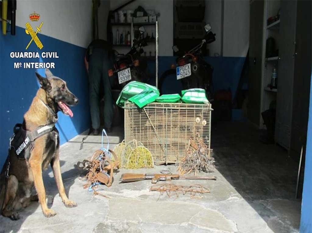 Detención e investigación de 16 personas por el uso ilegal de venenos para la caza.