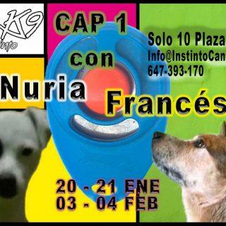 Clicker CAP1 en Zaragoza.