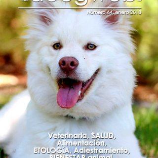 Revista gratis dr Doogweb enero 2018.
