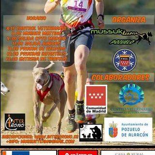 Campeonato de Madrid de Mushing, Mushing Pozuelo de Alarcón