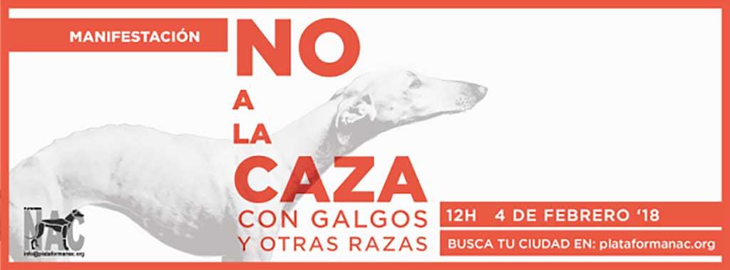 """Manifestaciones """"No a la caza con galgos y otras razas"""" en 31 ciudades españolas y varias europeas"""
