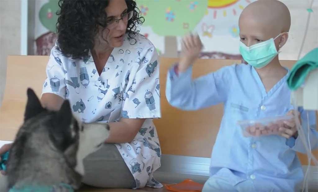 Can de la mano ayuda a los niños con estancias prolongadas en el Hospital La Fe de Valencia.