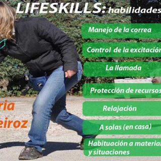 Lifeskills (habilidades para la vida diaria), curso que se celebrará los próximos 5 y 6 de mayo en Madrid