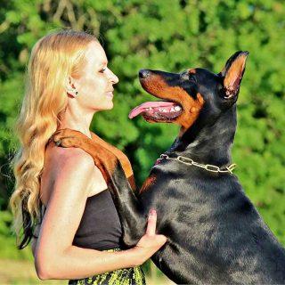 ¿Eres un dueño autoritario, permisivo, o no te involucras en la relación con tu perro?
