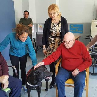 terapia con animales para personas mayores en la residencia Virgen del Valle de Murcia.