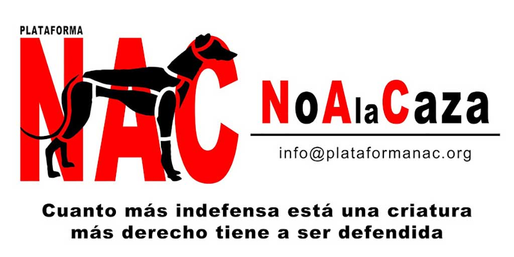 Concentration in Cuenca to demand an end to hunting with dogs and dogs of other races.