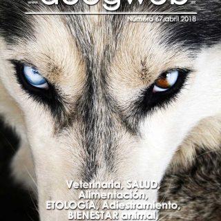 Revista gratis doogweb nº 67, abril 2018.