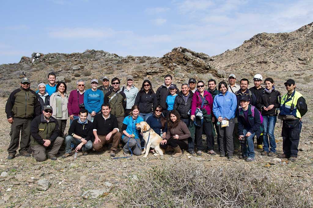 Proyecto de restauración en RN Pingüino de Humboldt (Chile) gracias a un perro.