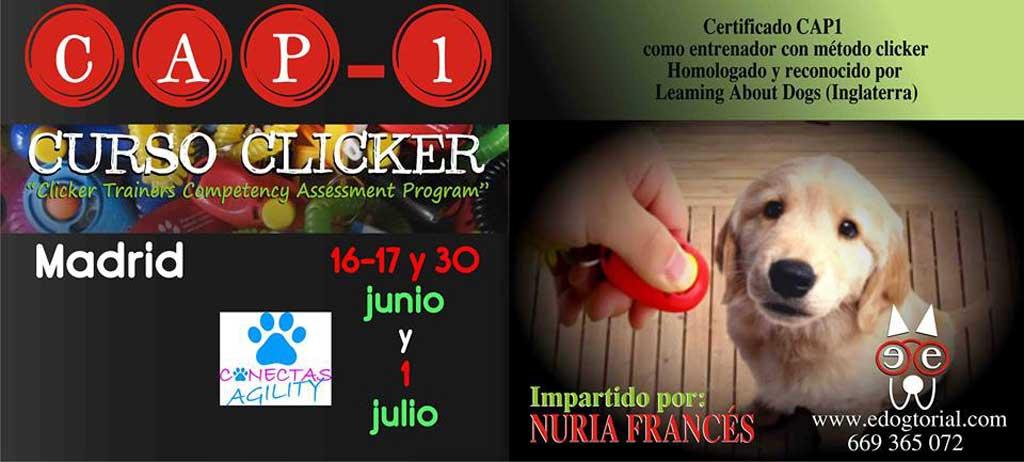 Curso de clicker y CAP1. Organiza Agility Conectas (Madrid).