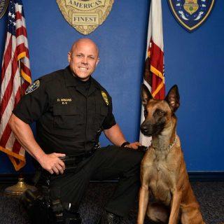 K9 Dexter del Departamento de Policía de San Diego, CA