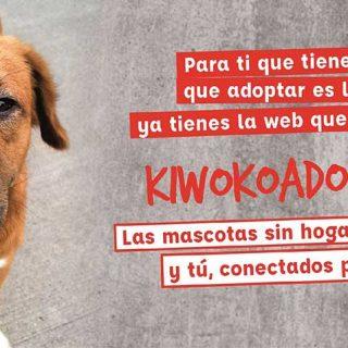 KiwokoAdopta, nueva plataforma para potenciar la adopción