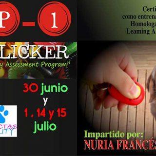 Madrid, Curso de clicker y CAP1. Organiza Agility Conectas