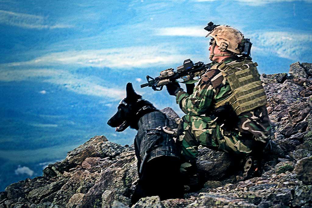 El Museo K-9 Project muestra al público cómo son los perros militares mejor preparados del mundo.