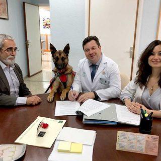 El Puerta del Mar y el Colegio de Veterinarios de Cádiz acuerdan el desarrollo del programa solidario de visitas animales a centros hospitalarios.