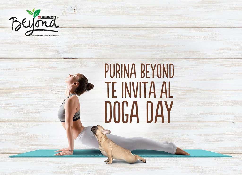 Doga. Master Class de yoga en Alcorcón.
