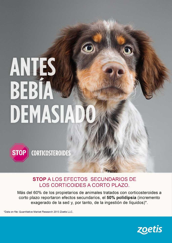 Stop a los efectos secundarios en animales de los corticosteroides a corto plazo.