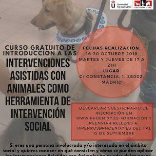 Curso Introducción a las Intervenciones Asistidas con Animales