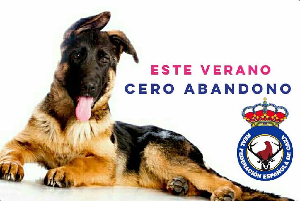 La Real Federación Española de Caza (RFEC) ha lanzado la campaña #CeroAbandono, una iniciativa para sensibilizar a los dueños de animales contra el abandono en época estival.