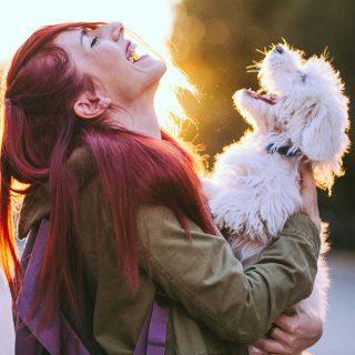 ¿Cómo cambia tu vida cuando la compartes con una mascota?