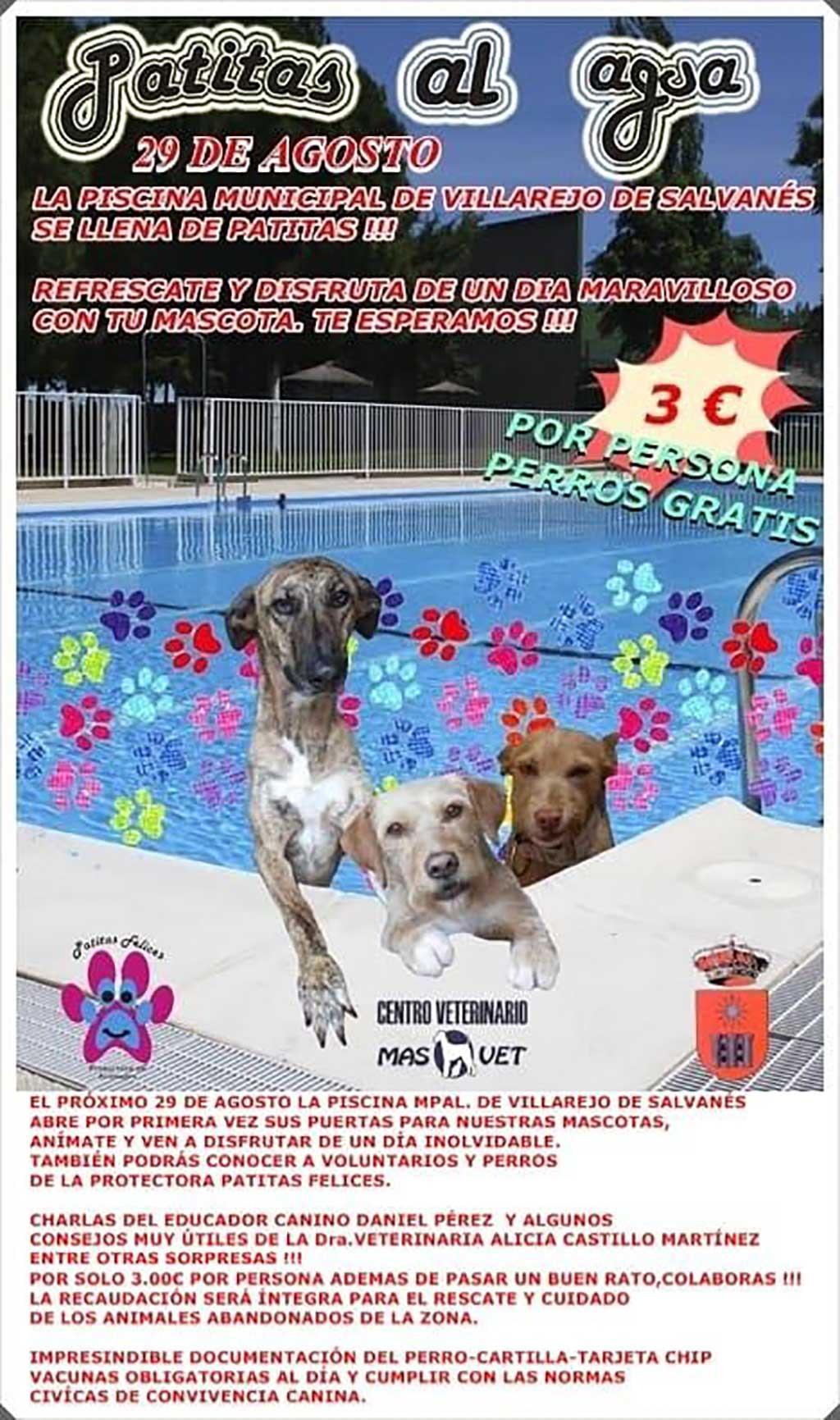 I edición de Patitas al Agua que se celebrará el próximo 29 de agosto en el municipio de Villarejo de Salvanés.