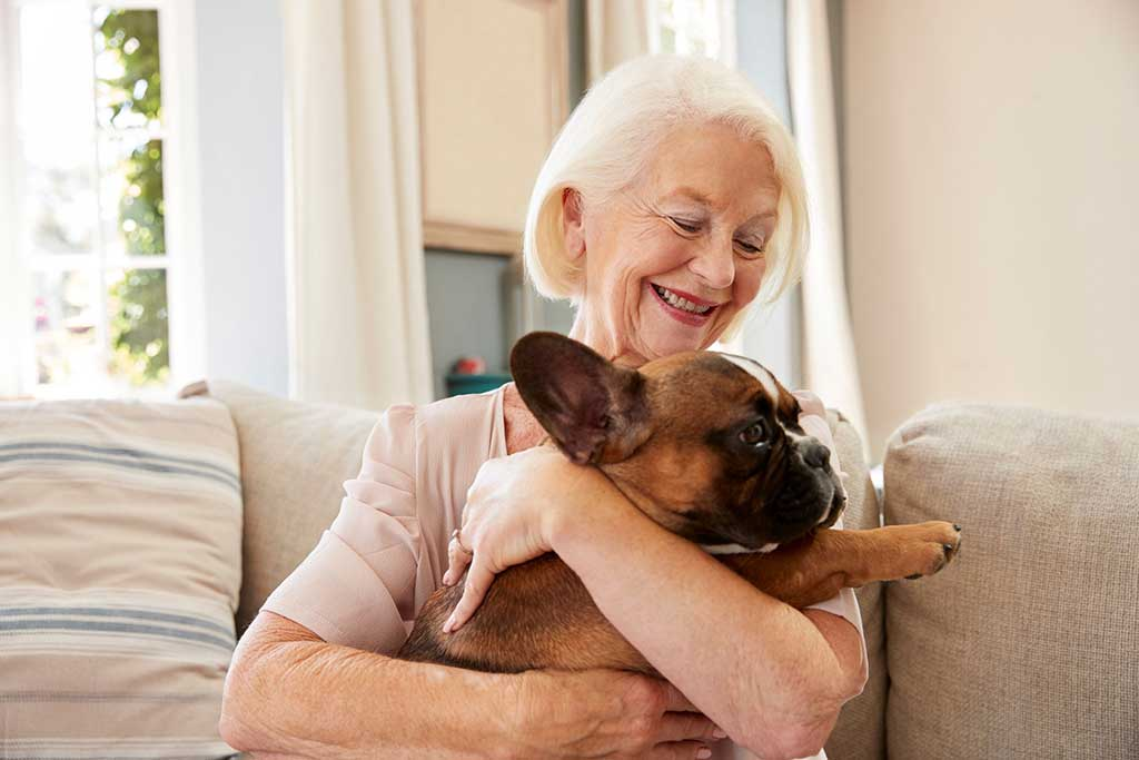 Benefits of incorporating a pet at home for the elderly.