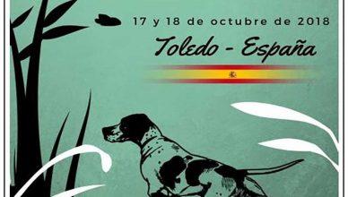 Campeonato del Mundo de Perros de Muestra y San Huberto.