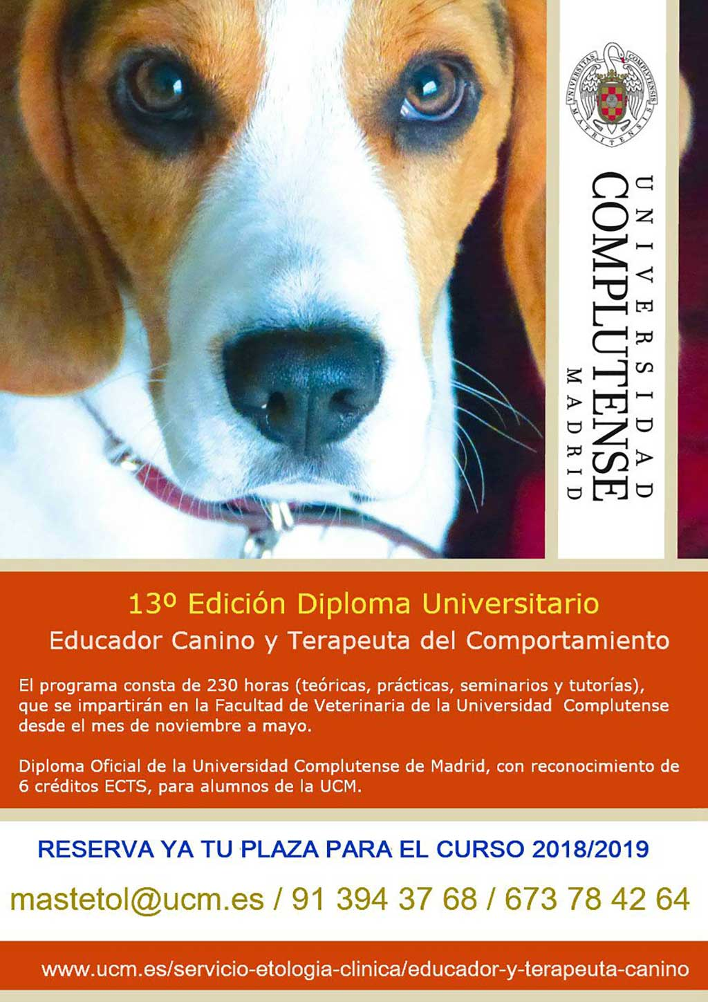 Diploma of the Canine Educator and Behavior Therapist of the UCM.