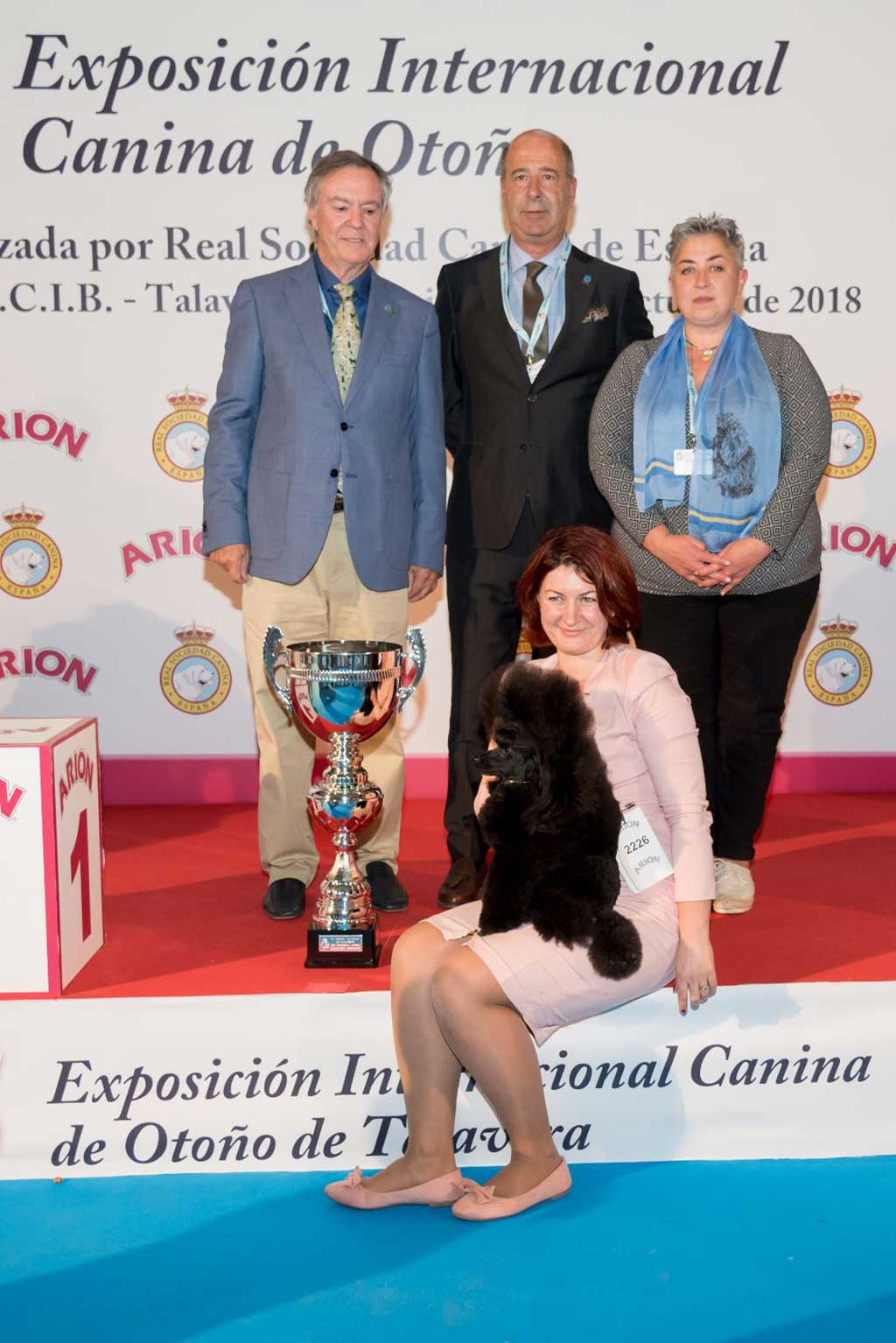 Results of the 35th edition of the International Dog Show of Autumn.
