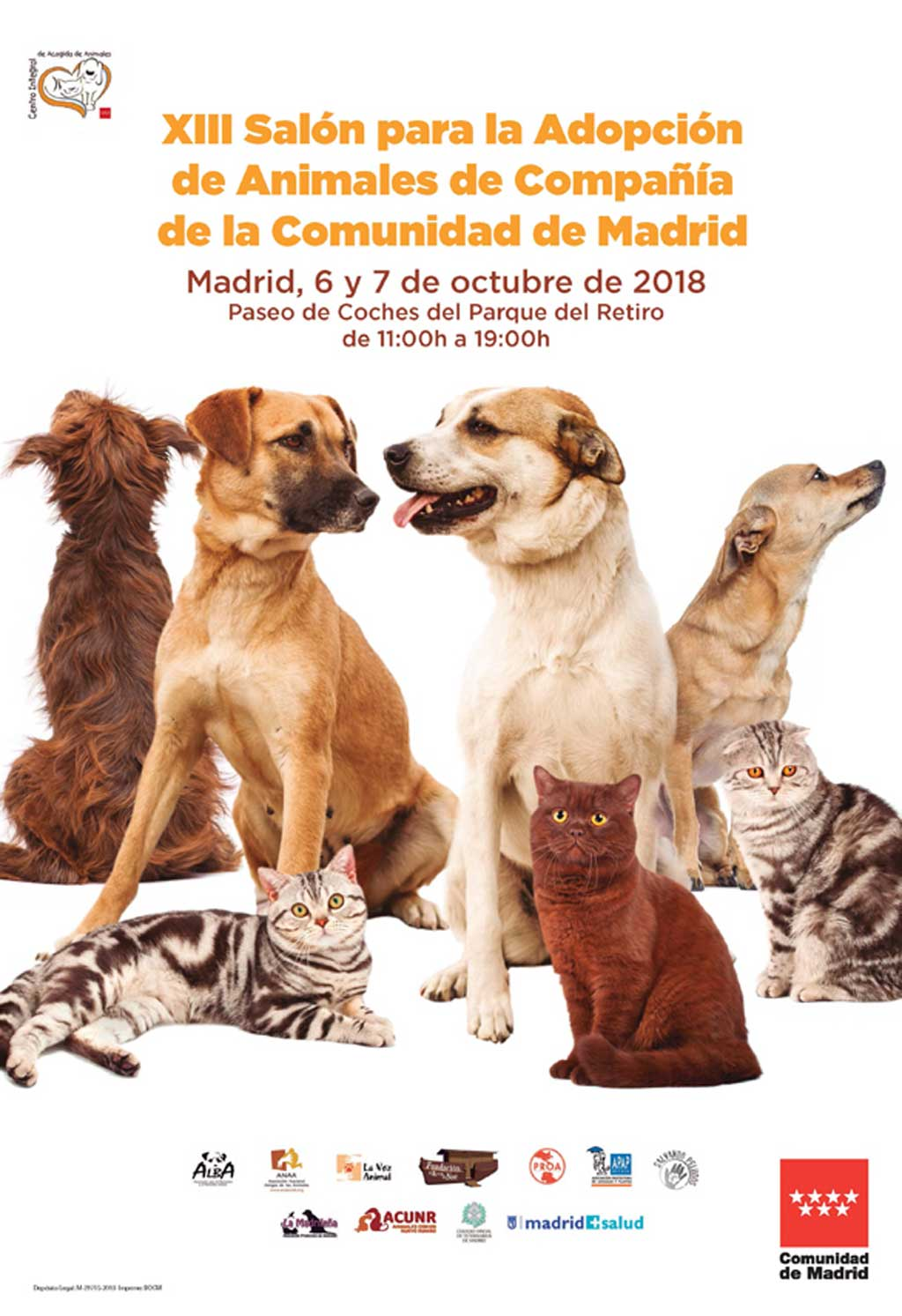 XIII Hall for the Adoption of Companion Animals of the Community of Madrid