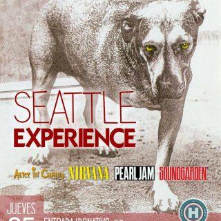 """Concierto benéfico """"Seattle experience"""" a favor de Arca de Noé Córdoba."""