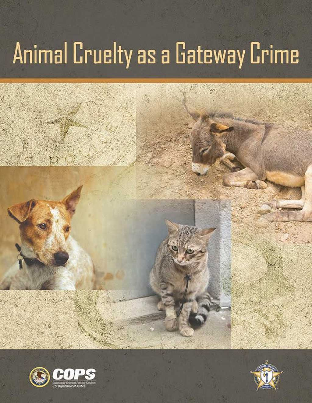 "Nuria Querol participa en el white paper ""Animal Cruelty as a Gateway Crime"""