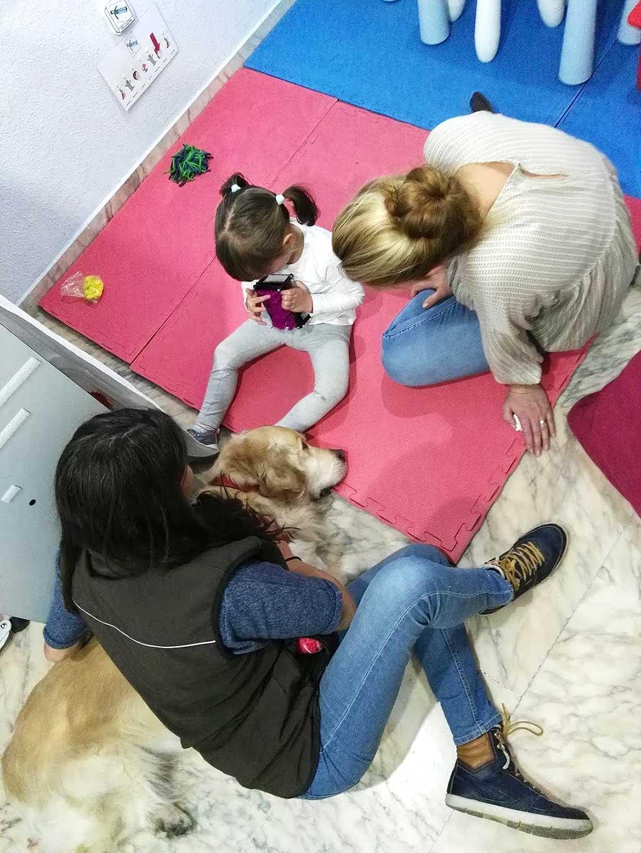 30 niños con discapacidad mejoran su autonomía y competencias gracias a perros de terapia y dentro de programas impulsados por Zoetis.