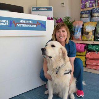 El Hospital veterinario Conde Orgaz explica cómo evitar que los perros puedan atacar.