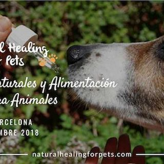 Natural Healing for Pets Symposium 2018. 24-25 de noviembre, en Barcelona.