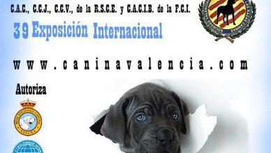 74-75 Exposición Nacional y 39 Exposición Internacional Canina de Valencia.