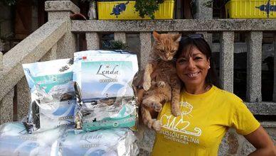 Lenda ha donado 3.000 kilos de comida a 10 protectoras de gatos.