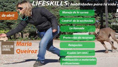 Lifeskills (habilidades para mejorar el día a día de los perros y los humanos).