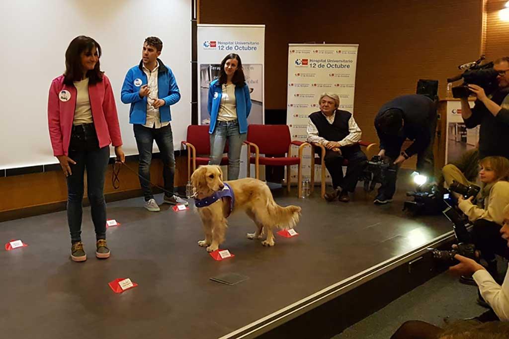 Beneficios de la terapia con perros en pacientes alcohólicos.