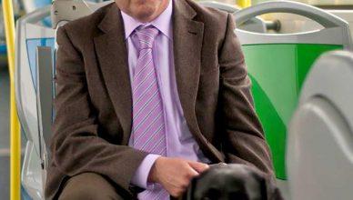 Podrás viajar con perros en los autobuses de la EMT.